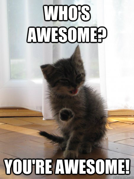 Who's awesome? You're awesome! - Who's awesome? You're awesome!  Confidence kitty