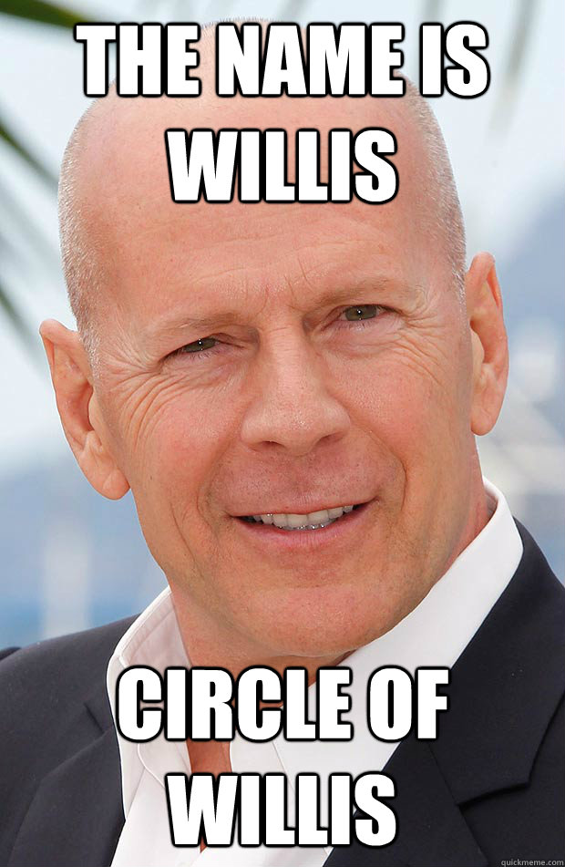 The name is willis Circle of willis