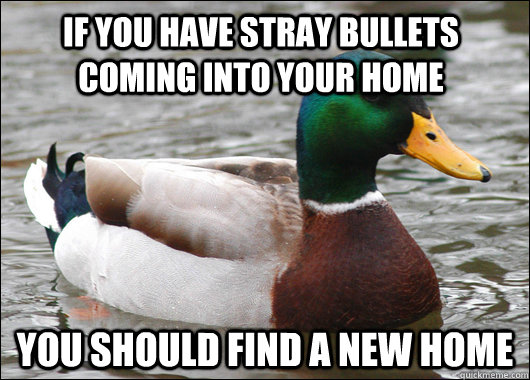 If you have stray bullets coming into your home You should find a new home - If you have stray bullets coming into your home You should find a new home  Actual Advice Mallard