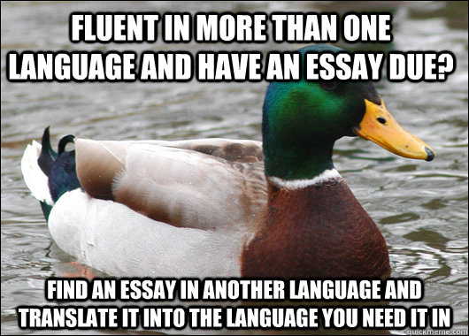 Fluent in more than one language and have an essay due? Find an essay in another language and translate it into the language you need it in - Fluent in more than one language and have an essay due? Find an essay in another language and translate it into the language you need it in  Actual Advice Mallard