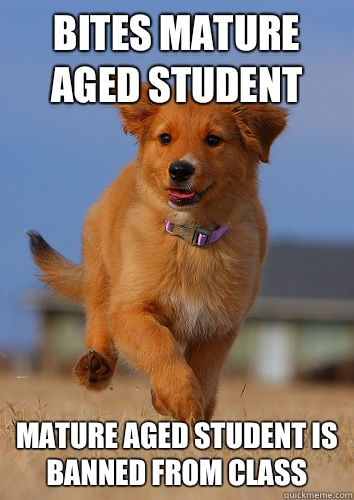 Bites Mature Aged Student Mature Aged Student is banned from class - Bites Mature Aged Student Mature Aged Student is banned from class  Ridiculously Photogenic Puppy