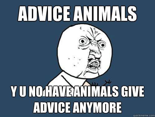 Advice ANIMALS y u no have animals give advice anymore - Advice ANIMALS y u no have animals give advice anymore  Y U No