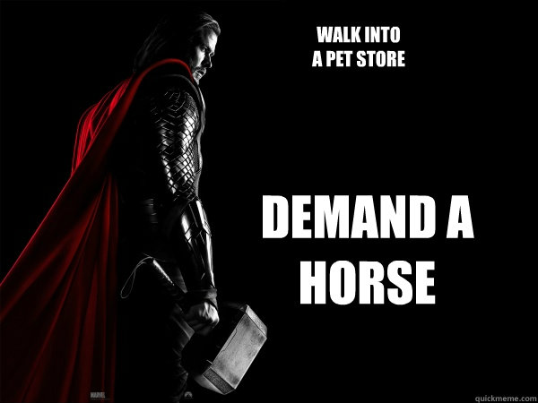 walk into  a pet store demand a horse  Thor