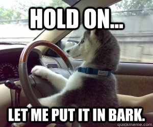 HOLD ON... LET ME PUT IT IN BARK.