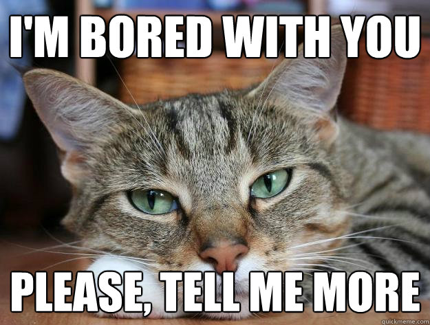 I'm bored with you please, tell me more - Bored cat ...