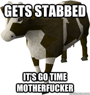 Gets stabbed It's go time motherfucker - Gets stabbed It's go time motherfucker  Runescape cow