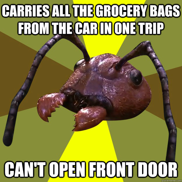 Carries all the grocery bags from the car in one trip Can't open front door - Carries all the grocery bags from the car in one trip Can't open front door  over-efficient ant