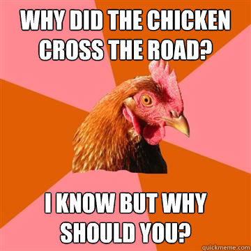 Why did the chicken cross the road? I know but why should you? - Why did the chicken cross the road? I know but why should you?  Anti-Joke Chicken