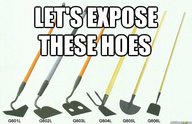 Let's expose these hoes - Let's expose these hoes  hoes