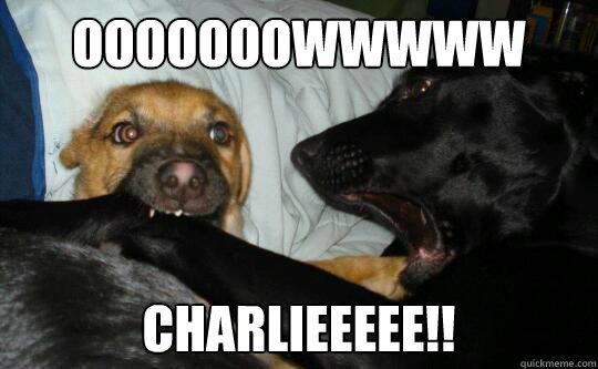 ooooooowwwww charlieeeee!! - ooooooowwwww charlieeeee!!  Charlie Bit Me