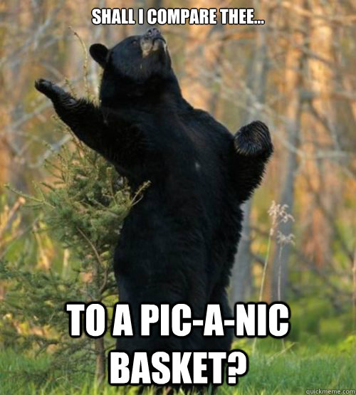 Shall I compare thee... To a pic-a-nic basket?