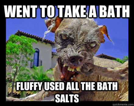 da7add2fdb828ef7e7f404d0f80be260c46a8c3560519ee6d0ad25e8808605b2 went to take a bath fluffy used all the bath salts zombie dog
