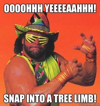 OOOOHHH YEEEEAAHHH! SNAP INTO A TREE LIMB!