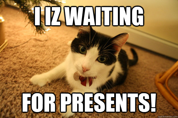 I iz waiting  For presents! - I iz waiting  For presents!  Cute Kittay!