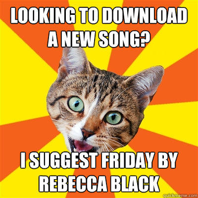 Looking to download a new song? I suggest Friday by Rebecca Black  Bad Advice Cat