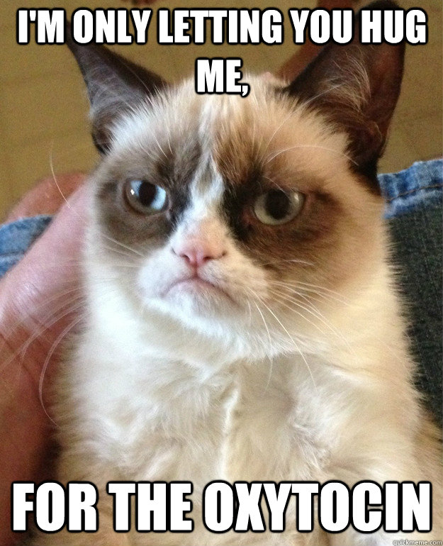 I'm only letting you hug me, for the oxytocin - I'm only letting you hug me, for the oxytocin  Grumpy Cat