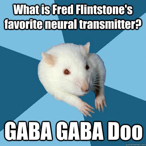 What is Fred Flintstone's favorite neural transmitter? GABA GABA Doo - What is Fred Flintstone's favorite neural transmitter? GABA GABA Doo  Psychology Major Rat