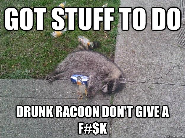 dacf7bd32a1b7f3cc1345aa5b8004190795e8bc358a74ce648f488810481f168 drunk racoon memes quickmeme,Depressed Drunk Meme