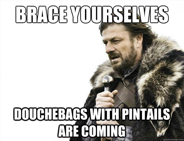Brace yourselves Douchebags with pintails are coming - Brace yourselves Douchebags with pintails are coming  Brace Yourselves - Borimir