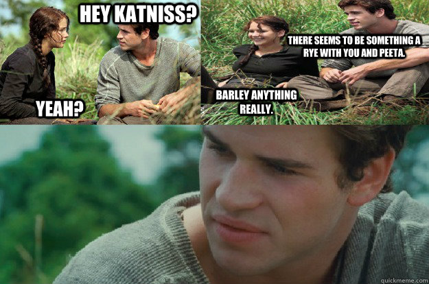 Hey Katniss? Yeah? Barley anything really. There seems to be something a rye with you and Peeta.