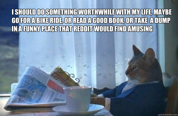I should do something worthwhile with my life, maybe go for a bike ride, or read a good book, or take  a dump in a funny place that reddit would find amusing - I should do something worthwhile with my life, maybe go for a bike ride, or read a good book, or take  a dump in a funny place that reddit would find amusing  Sophisticated Cat