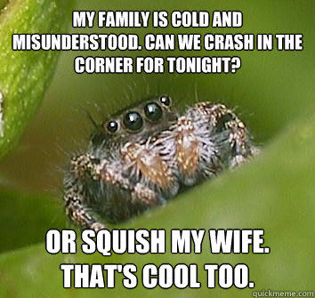 my family is cold and misunderstood. Can we crash in the corner for tonight? Or squish my wife. That's cool too. - my family is cold and misunderstood. Can we crash in the corner for tonight? Or squish my wife. That's cool too.  Misunderstood Spider