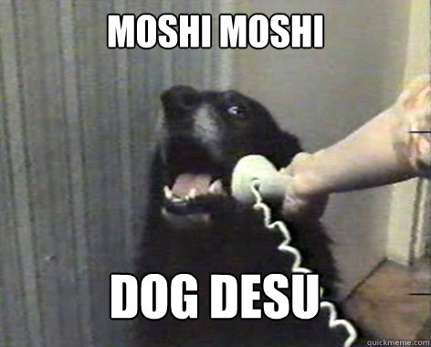 Moshi moshi dog desu  yes this is dog