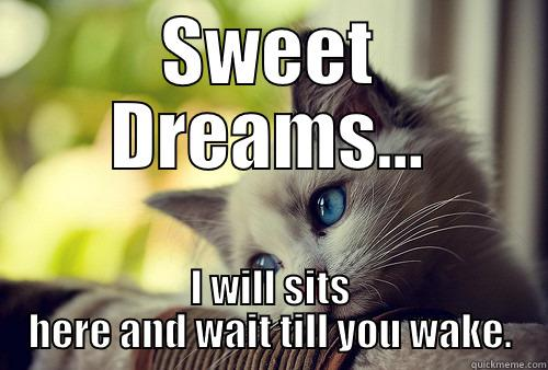 Sweet Dreams - SWEET DREAMS... I WILL SITS HERE AND WAIT TILL YOU WAKE. First World Problems Cat