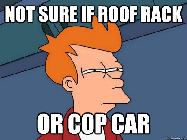 Not sure if roof rack or cop car - Not sure if roof rack or cop car  Futurama Fry