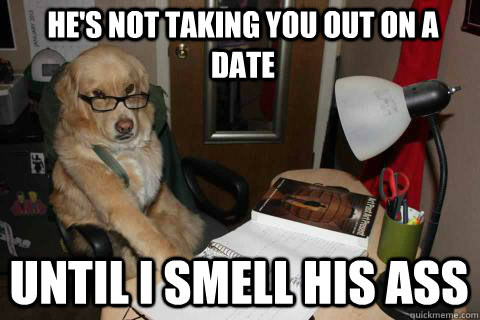 He's not taking you out on a date Until I smell his ass - He's not taking you out on a date Until I smell his ass  Financial Advice Dog