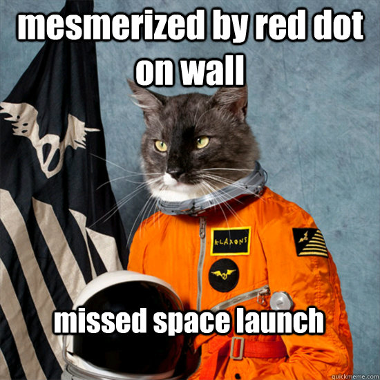 mesmerized by red dot on wall missed space launch - mesmerized by red dot on wall missed space launch  cat astronaut