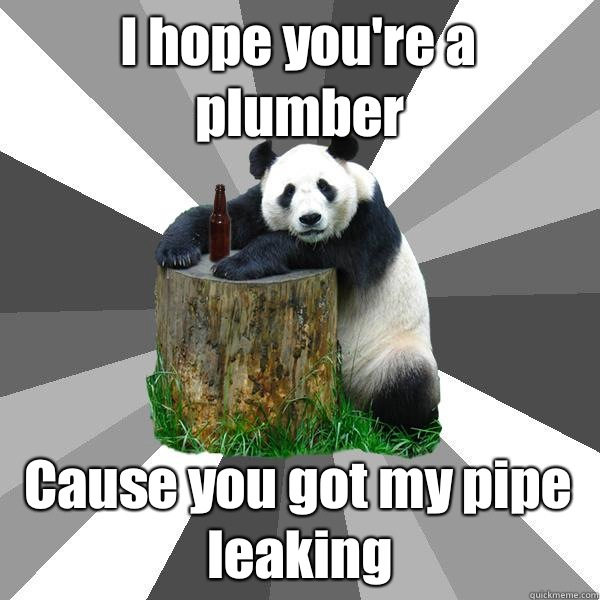1000  images about Plumbing MEMES on Pinterest