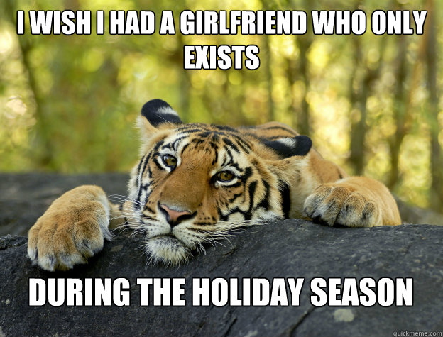i wish i had a girlfriend who only exists  during the holiday season - i wish i had a girlfriend who only exists  during the holiday season  Confession Tiger