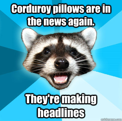 Corduroy pillows are in the news again. They're making headlines - Corduroy pillows are in the news again. They're making headlines  Lame Pun Coon