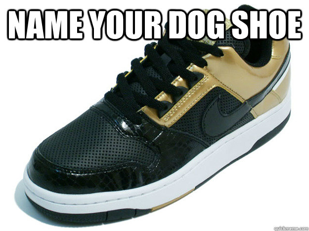 name your dog shoe