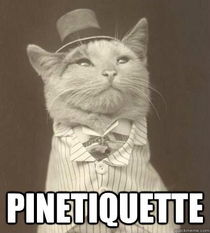 Pinetiquette -   Pinetiquette  Aristocat