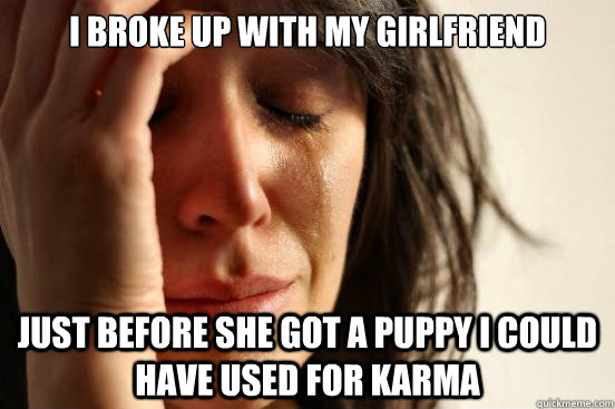 I broke up with my girlfriend just before she got a puppy I could have used for karma - I broke up with my girlfriend just before she got a puppy I could have used for karma  First World Problems