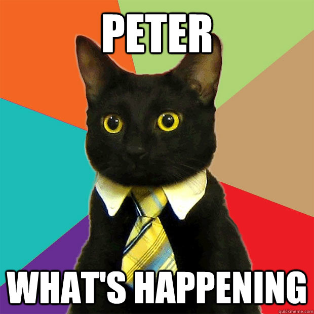 Peter What's happening - Peter What's happening  Business Cat