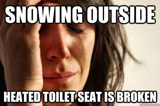 Snowing outside Heated toilet seat is broken  First World Problems