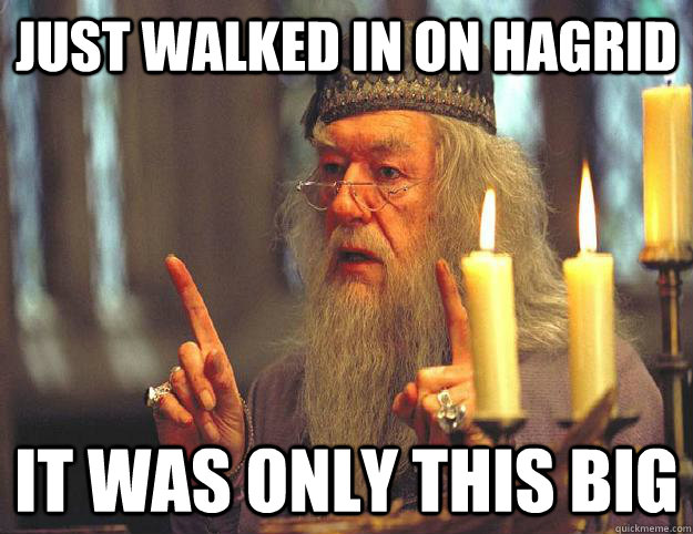 just walked in on hagrid it was only this big  Scumbag Dumbledore