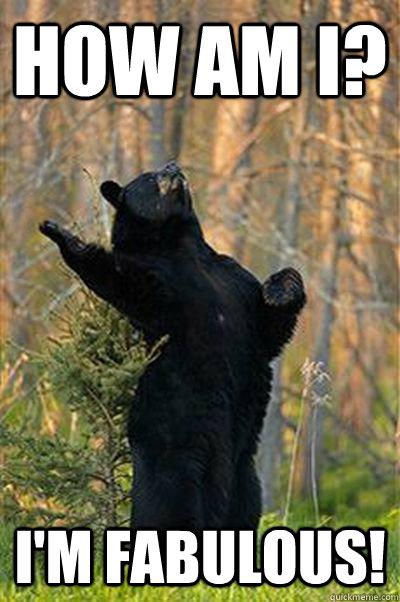 How am I? I'm FABULOUS!  Fabulous Bear