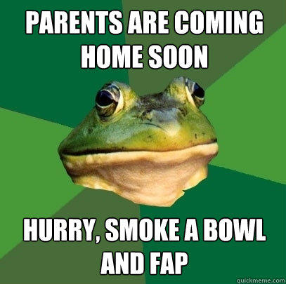 PARENTS ARE COMING HOME SOON HURRY, SMOKE A BOWL AND FAP - PARENTS ARE COMING HOME SOON HURRY, SMOKE A BOWL AND FAP  Foul Bachelor Frog