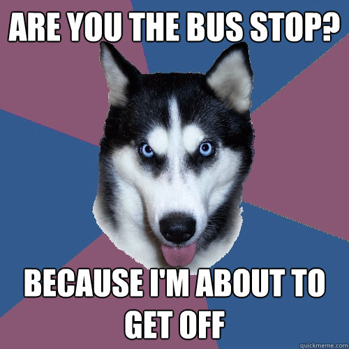 Are you the bus stop? Because I'm about to get off  Creeper Canine