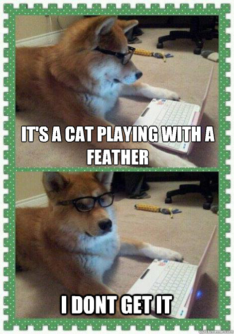 It's a cat playing with a feather I dont get it