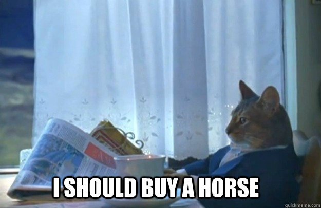 I should buy a horse