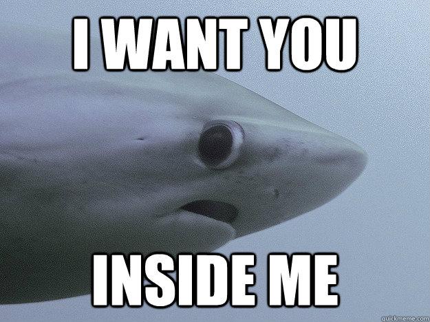 I want you inside me meme please