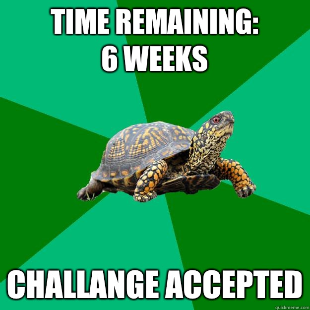 TIME REMAINING: 6 Weeks CHALLANGE ACCEPTED - TIME REMAINING: 6 Weeks CHALLANGE ACCEPTED  Torrenting Turtle