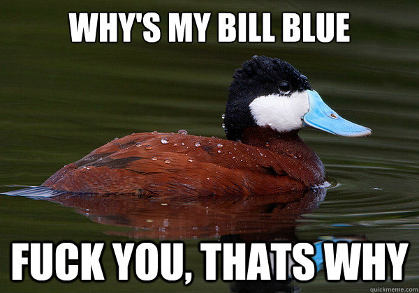 Why's my bill blue Fuck you, thats why