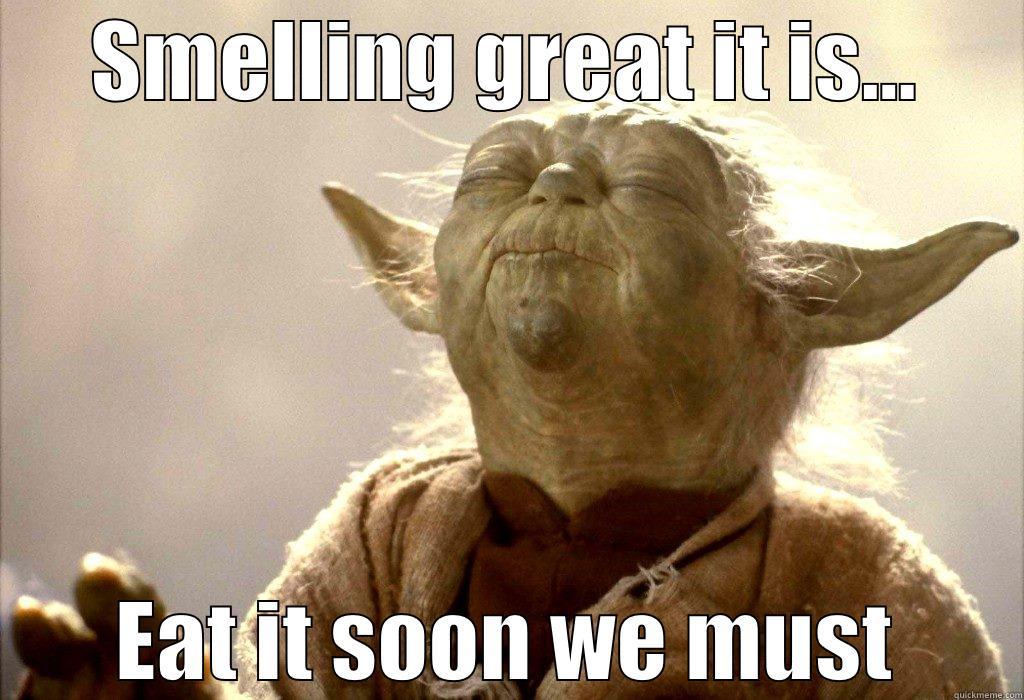 Yoda Meme Yoda da Boda - SMELLING GREAT