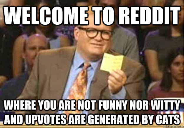 Welcome to reddit Where you are not funny nor witty and upvotes are generated by cats - Welcome to reddit Where you are not funny nor witty and upvotes are generated by cats  Welcome to